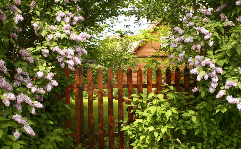 How to dispose of a wooden fence