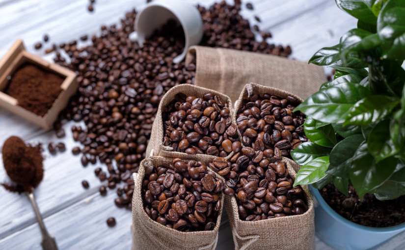 The lowdown on sustainable coffee