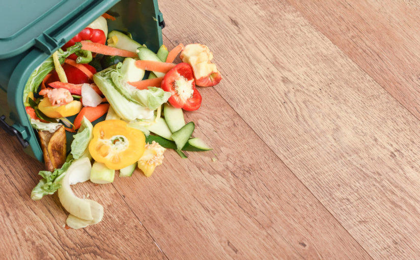 Top tips for reducing food waste and saving money