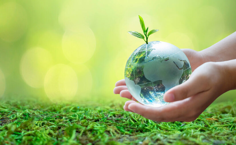 Everything you need to know about World Environment Day 2021