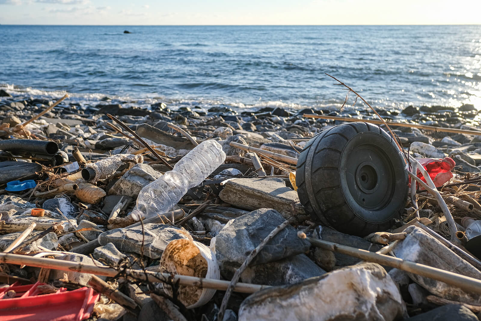 Waste on a beach including water bottles, tyres and other plastics.